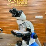 C- Shaped Binocular Microscope